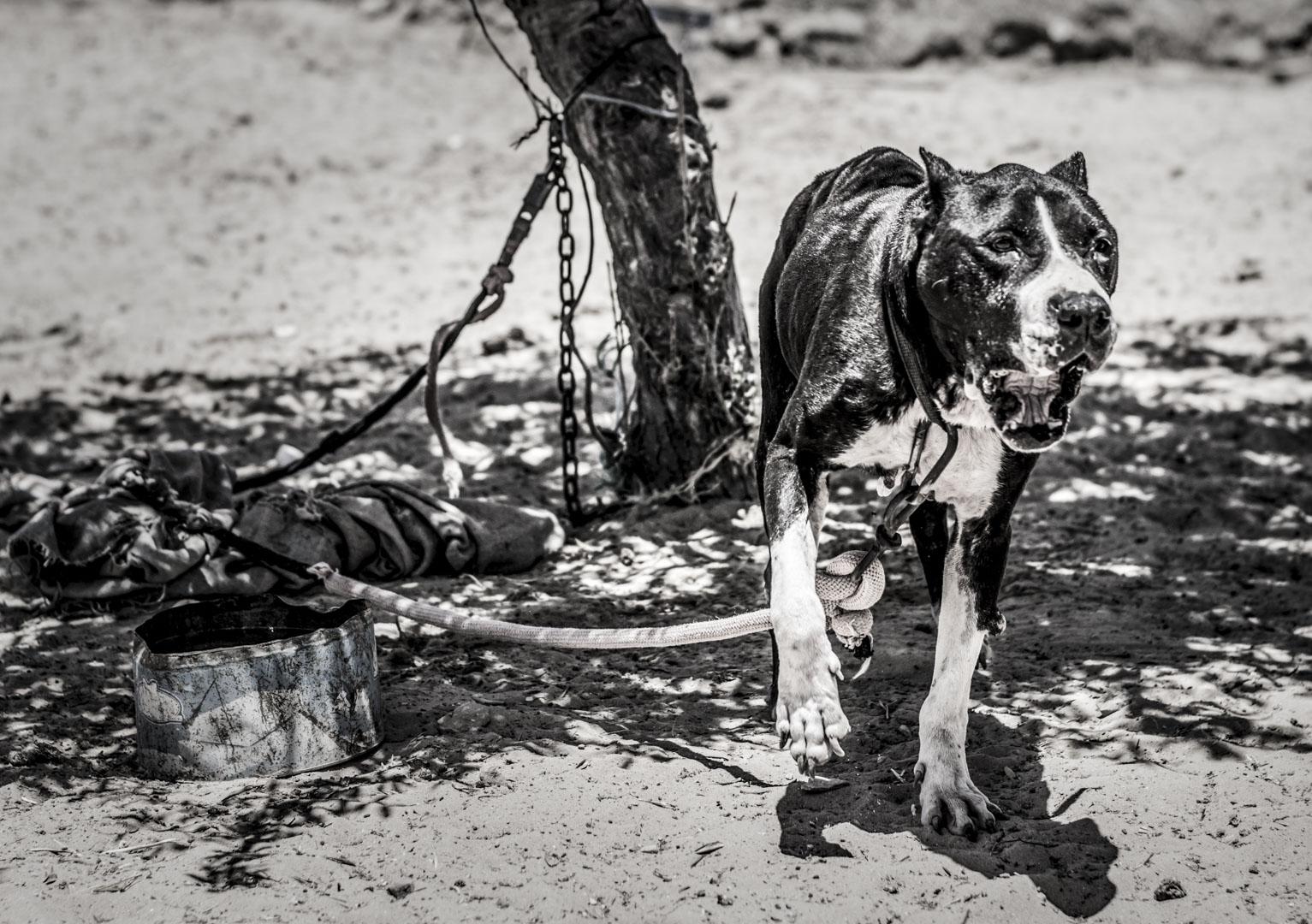 Fotografická expedice Djerba 2017 reportážní fotograf praha Jakub Morávek Djerba photography -86